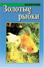 Содержание золотой рыбки в домашних условиях